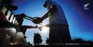 NZC Strategic Plan 2012 - 2015 - New Zealand Cricket