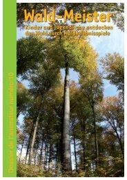 Wald - Centre de Jeunesse Hollenfels - Service National de la ...