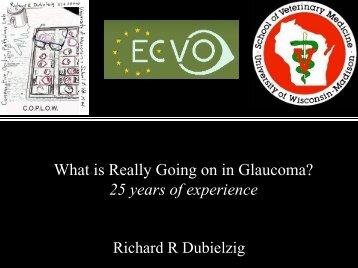 What is really going on in Glaucoma?