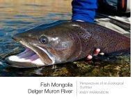 Fish Mongolia ! Delger Muron River