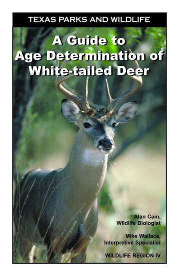 A Guide to Age Determination of White-tailed Deer - Trinity Waters
