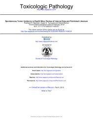 Toxicologic Pathology - PhUSE Wiki