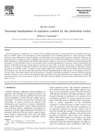 Neuronal mechanisms of executive control by the prefrontal cortex