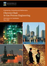 Chevron Chair in Gas Process Engineering - His.admin.uwa.edu.au