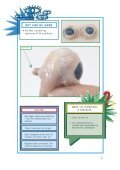 Øjet - Experimentarium - Page 7