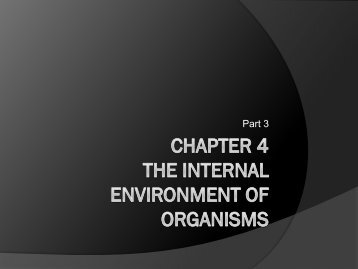Chapter 4 The Internal Environment of Organisms