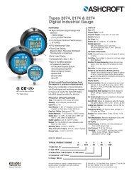 Digital Industrial Gauge Types 2074, 2174 & 2274 - Temp-Press Inc