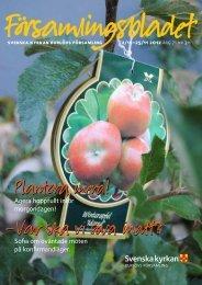 Församlingsbladet 2012-10-26 - Mild Media