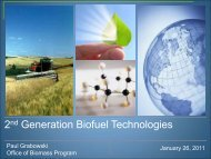 2nd Generation Biofuel Technologies - National Institute of Food ...