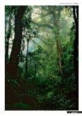Parquet Sol placage bois 2010 - Nature & développement - Page 5