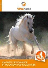 Magnetic resonance stiMulation for your horse - VITA-LIFE
