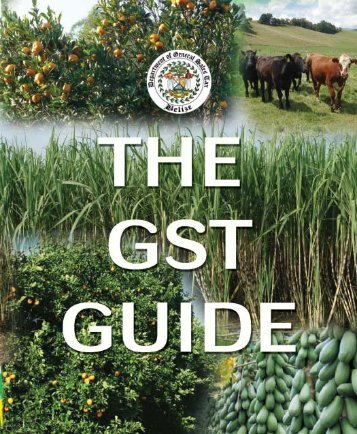 The GST Guide - The Belize Department of General Sales Tax