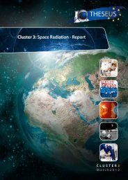 Cluster 3: Space Radiation - Report - European Science Foundation