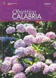 numero 2 anno 2011 - CCIAA di Catanzaro - Camera di Commercio