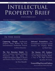 Capturing Clouds - American University Intellectual Property Brief