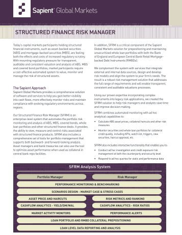 Download the Structured Finance Risk Manager Fact Sheet - Sapient