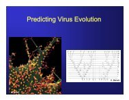 presentation, part 2 - Molecular Evolution