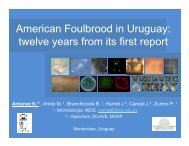 American Foulbrood in Uruguay: twelve years from its first ... - Apinews
