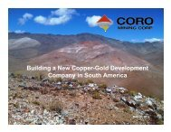 Building a New Copper-Gold Development Company in South ...