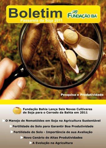 Pesquisa e Produtividade - Fundação Bahia