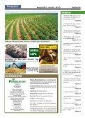 Pesquisa e Produtividade - Fundação Bahia - Page 4
