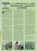 Pesquisa e Produtividade - Fundação Bahia - Page 7