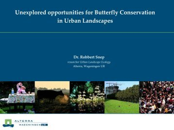 Unexplored opportunities for Butterfly Conservation in ... - Vlindernet