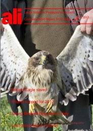 Booted Eagle saved Project support for 2012 Spring ... - LIPU-UK