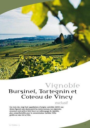 Bursinel, Tartenien, Coteau de Vincy - STLDESIGN