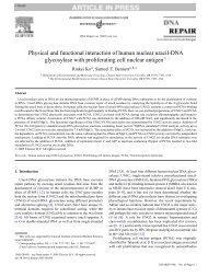 Physical and functional interaction of human nuclear uracil-DNA ...