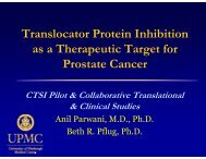 Translocator Protein Inhibition as a Therapeutic Target for P C ...