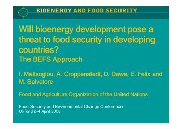 Will bioenergy development pose a threat to food security - Global ...