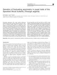 Genetics of fluctuating asymmetry in pupal traits of the Speckled ...