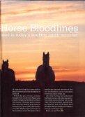 Top 10 Bloodlines - Bijou Creek Farm - Page 2
