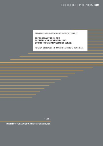 pdf-Download - und Umweltmanagement - Hochschule Pforzheim