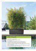 "Lechuza-Katalog ""Trend-Collektuin"" - Gartencenter Stassen - Seite 2"