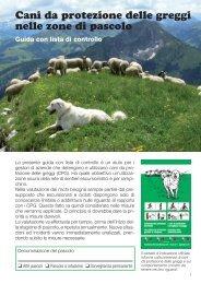 Cani da protezione delle greggi nelle zone di pascolo