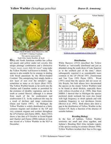 Yellow Warbler - Michigan Breeding Bird Atlas Website