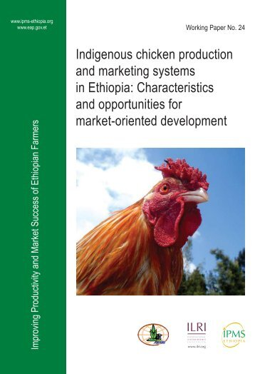 Indigenous chicken production and marketing systems in Ethiopia ...