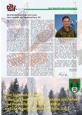 Task Force 25 - Österreichs Bundesheer - Seite 3