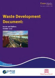 Issues and Options Paper - Chelmsford Borough Council