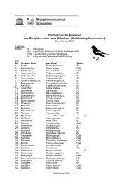 Orni-Liste BR alt - im Biosphärenreservat Schaalsee