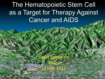 The Hematopoietic Stem Cell as a Target for Therapy Against ...
