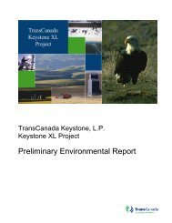 Preliminary Environmental Report - Keystone XL pipeline