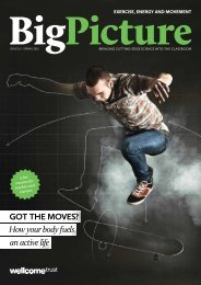 Big Picture: Exercise, Energy and Movement - Wellcome Trust