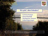 1.339 kg P/a - im Biosphärenreservat Schaalsee