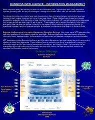 Business Intelligence - MTT Associates