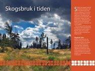 Skogsbruk i tiden - Riksantikvarieämbetet