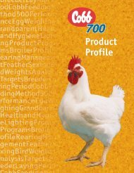 Cobb 700 Product Profile - The Poultry Site
