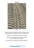 Infobrief - Deutschsprachiges Evangelisches Pfarramt an der Costa ... - Seite 7
